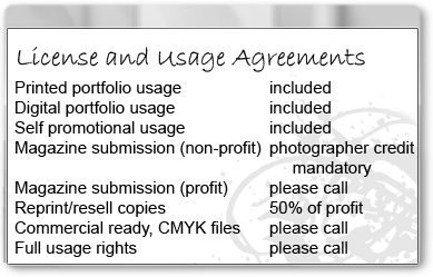 Portfolio usage rights